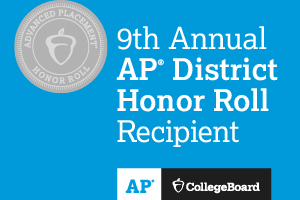 This is a logo for the 9th annual AP honor roll